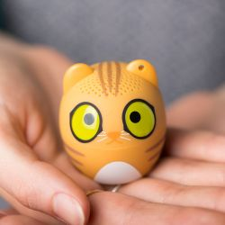 ENCEINTE BT MINI CHAT