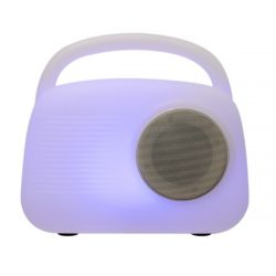 ENCEINTE BT OUTDOOR LED RADIOLIGHT