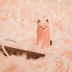 BATTERIE DE SECOURS CHAT 5000 MAH